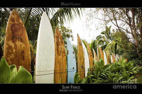 Surfboard Fence Photograph - Surf Fence - Maui Hawaii Posters Series by Denis Dore