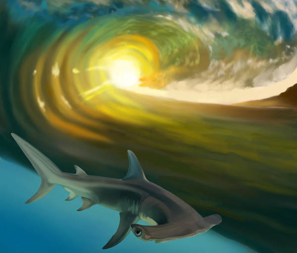 Hammer Head Shark Wall Art - Digital Art - Surf Shark by Maxwell Dusky