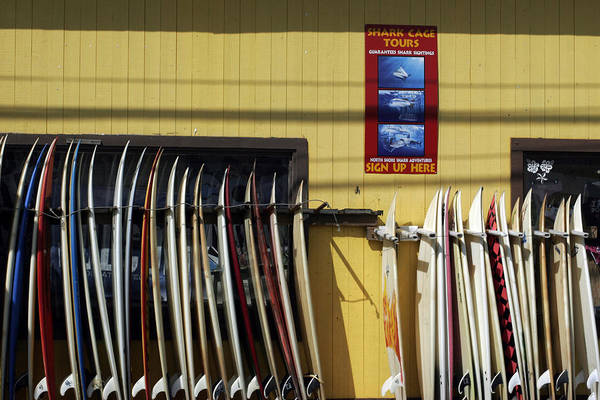 Photograph - Surfboard Selection by Kenneth Campbell