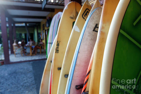 El Salvador Photograph - Surfboards On The Beach.  by Eyal Aharon
