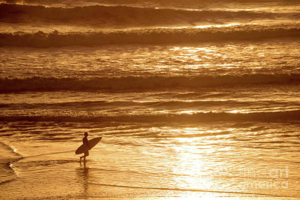 Wall Art - Photograph - Surfer by Delphimages Photo Creations