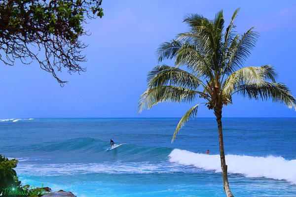 Ocean Wall Art - Photograph - Surfers Of Hawaii by Michael Rucker