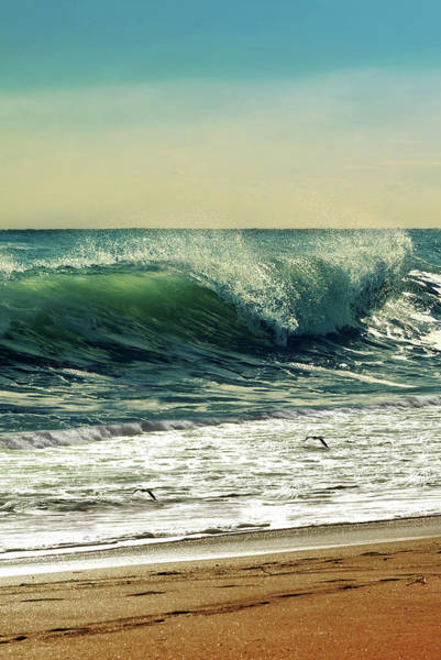 Wall Art - Photograph - Surf's Up by Laura Fasulo