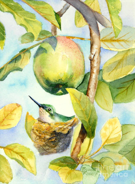 Apple Tree Wall Art - Painting - Surprise In The Apple Tree by Bonnie Rinier
