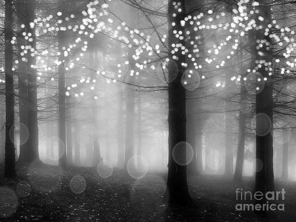 Sparkle Wall Art - Photograph - Surreal Fantasy Fairytale Black White Fairylights Sparkling Trees Nature Woodlands Print Home Decor by Kathy Fornal