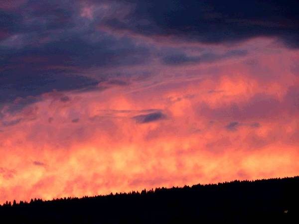 Wall Art - Photograph - Surreal Sunset by Will Borden