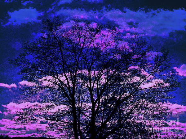 Digital Art - Surreal Tree Silhouette by Dee Flouton