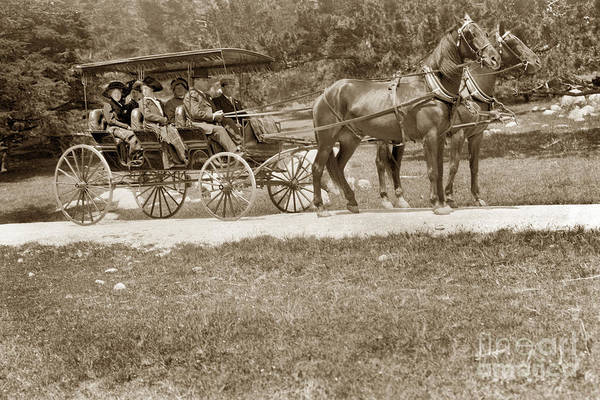 Photograph - Surrey With The Fringe On Top Circa 1905 by California Views Archives Mr Pat Hathaway Archives