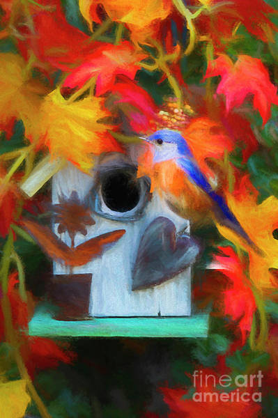 Wall Art - Digital Art - Surrounded In Fall Color by Darren Fisher