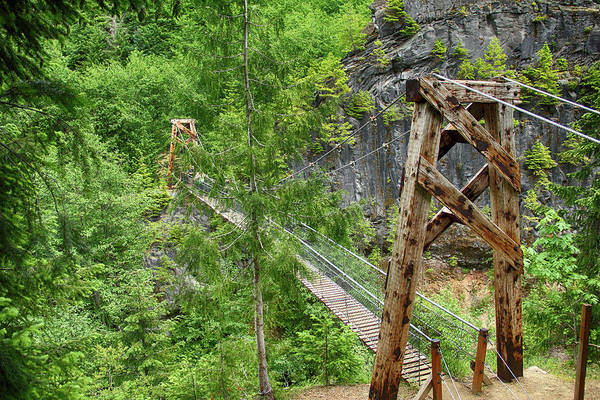 Photograph - Suspension Bridge At Lava Canyon by Marie Leslie