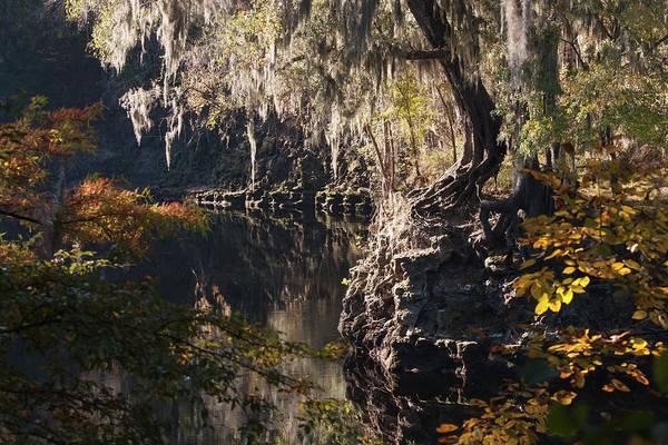 Photograph - Suwannee Rocky Point by Paul Rebmann