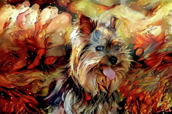 Digital Art - Suzy Q The Yorkie by Peggy Collins