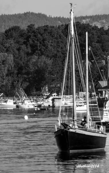 Wall Art - Photograph - Sw Harbor In Black And White by Dick Botkin