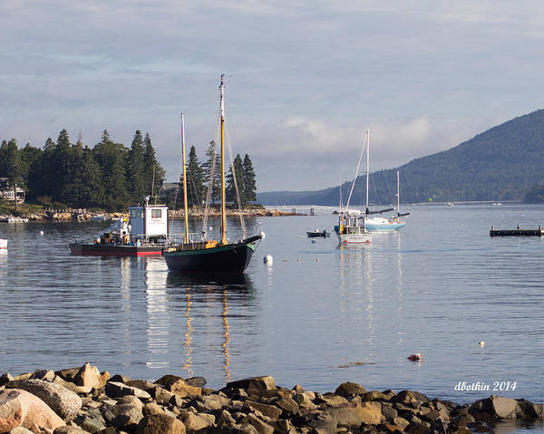 Wall Art - Photograph - Sw Harbor Quiet Cove by Dick Botkin