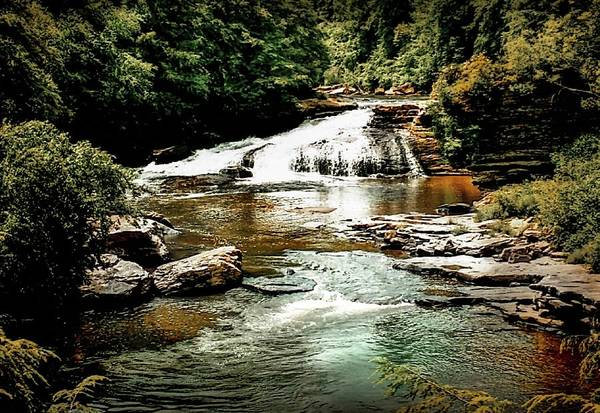 Swallow Falls State Park Wall Art - Photograph - Swallow Falls Maryland by Michael Forte
