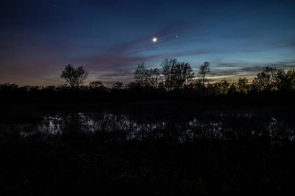 Photograph - Swamp At Dusk With Moon by Sven Brogren