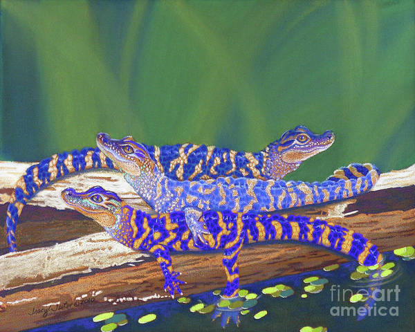 Gator Wall Art - Pastel - Swamp Babies by Tracy L Teeter