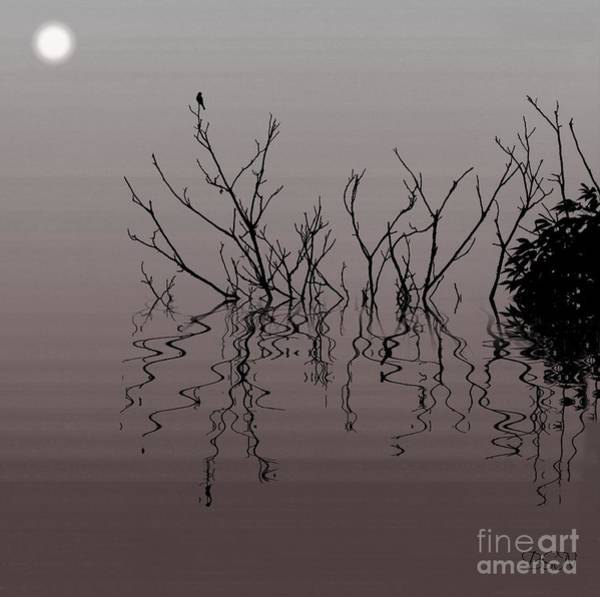 Photograph - Swamp Fever by Barbara S Nickerson