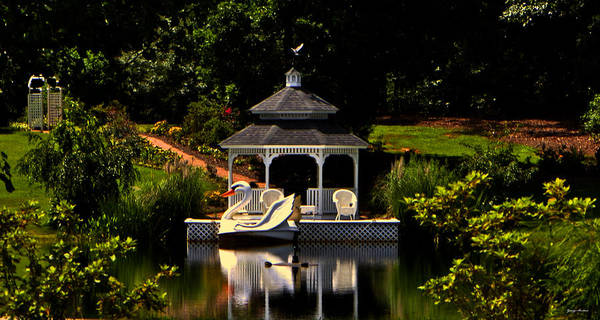 Swan Boats Photograph - Swan Boat 001 by George Bostian