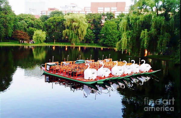 Swan Boats Photograph - Swan Boats At Rest by Beth Myer