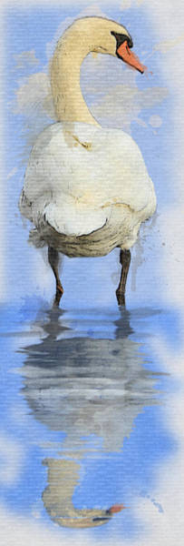 Grand Rapids Painting - Swan by David Oakley