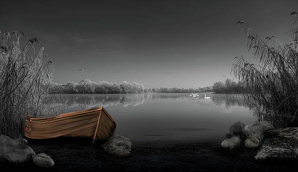 Swan Boats Photograph - Swan Lake by Phil Pace