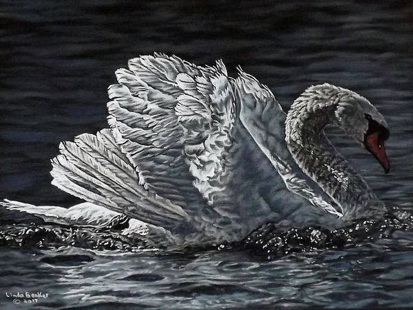 Painting - Swan by Linda Becker