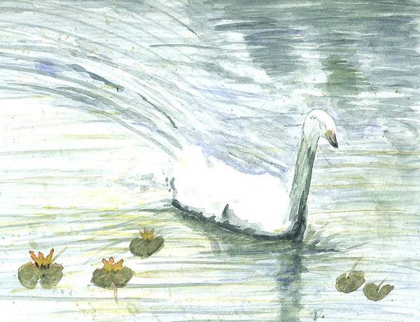 Painting - Swan Swimming by Darren Cannell