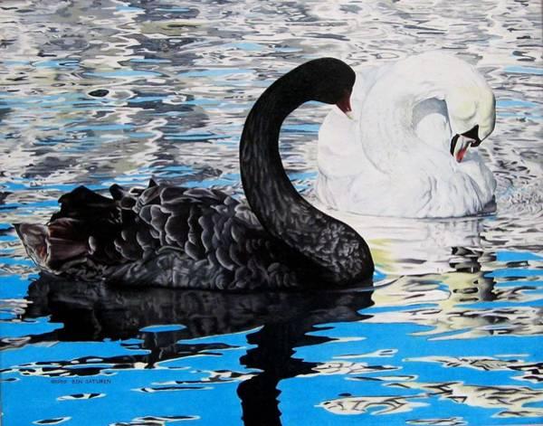 Trumpeter Swan Painting - Swans by Ben Saturen