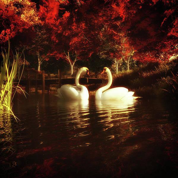 Painting - Swans In A Pond by Jan Keteleer