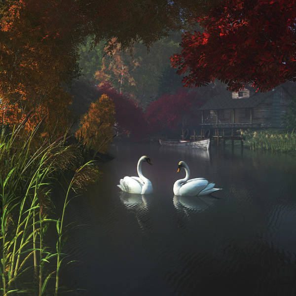 Swans In A River Near Home Art Print