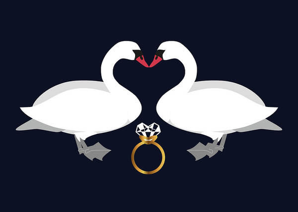 Digital Art - Swans In Love by Marina Usmanskaya