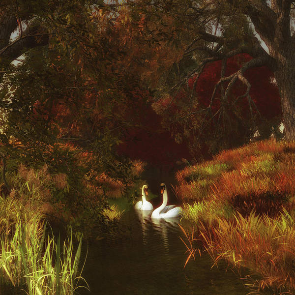 Painting - Swans In The Forest by Jan Keteleer