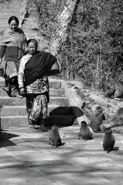 Photograph - Swayambhunath Temple Pilgrims by Aidan Moran