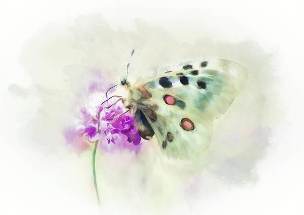 Nectar Mixed Media - Sweet Butterfly Nectar by Amanda Lakey