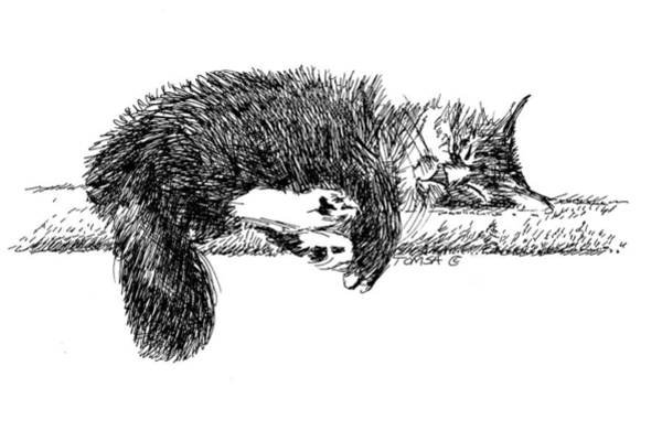Tabby Drawing - Sweet Dreams by Bill Tomsa