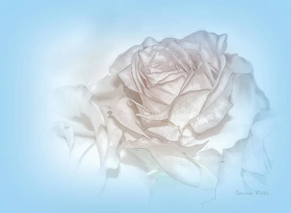 Photograph - Sweet Fragrance by Bonnie Willis