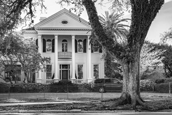 Charles Mansion Photograph - Sweet Home New Orleans 6 - Bw by Steve Harrington