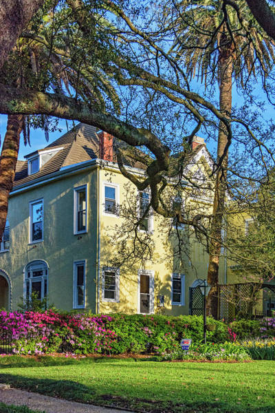 Charles Mansion Photograph - Sweet Home New Orleans - Spring Garden by Steve Harrington