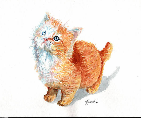 Wall Art - Painting - Sweet Kitty by Timithy L Gordon