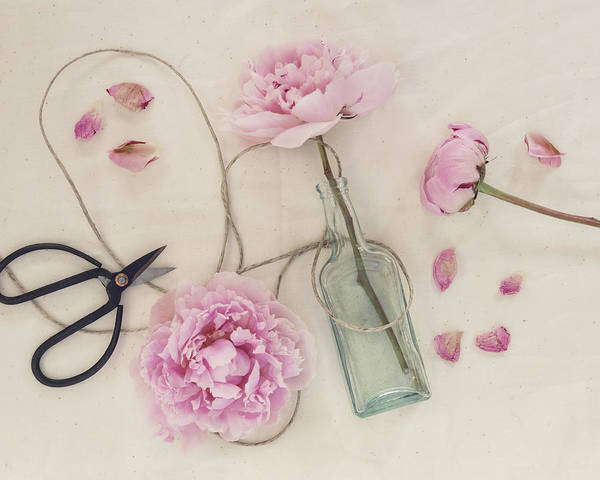 Photograph - Sweet Love by Kim Hojnacki