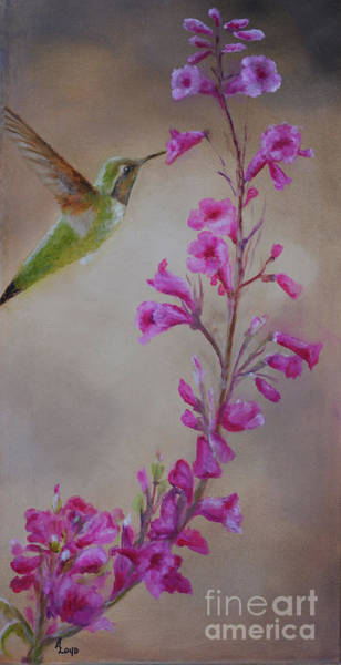 Wall Art - Painting - sweet Nectar by Ann Loyd