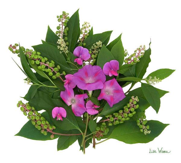 Photograph - Sweet Pea Bouquet by Lise Winne