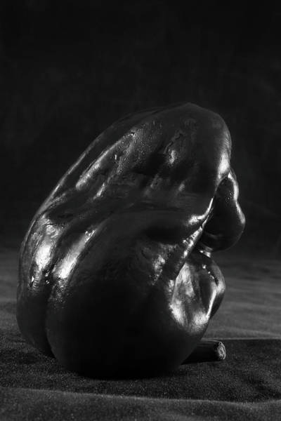 Wall Art - Photograph - Sweet Pepper Study- Back Of A Lonely Pepper In Monochrome by Iordanis Pallikaras