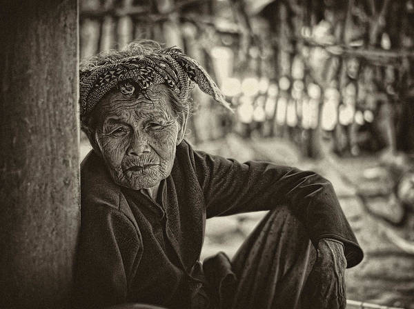 Photograph - Sweet Senior by Cameron Wood