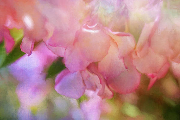 Wall Art - Digital Art - Sweet Spring by Terry Davis