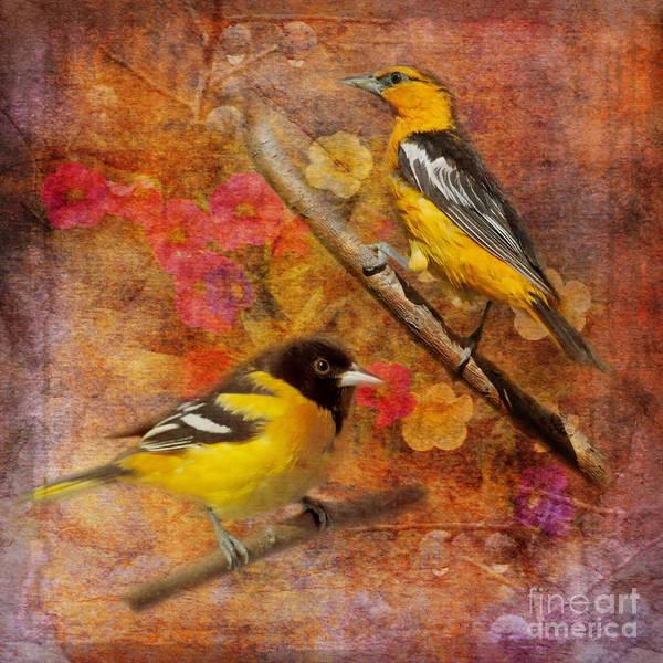 Digital Art - Sweet Sweet Song 2015 by Kathryn Strick
