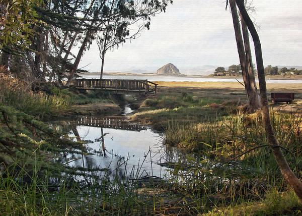 Morro Bay Digital Art - Sweet Water Park by Sharon Foster