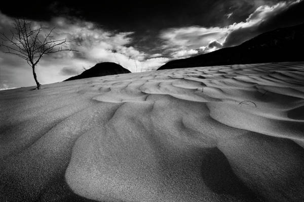 Photograph - Swerves And Curves In Jasper by Dan Jurak
