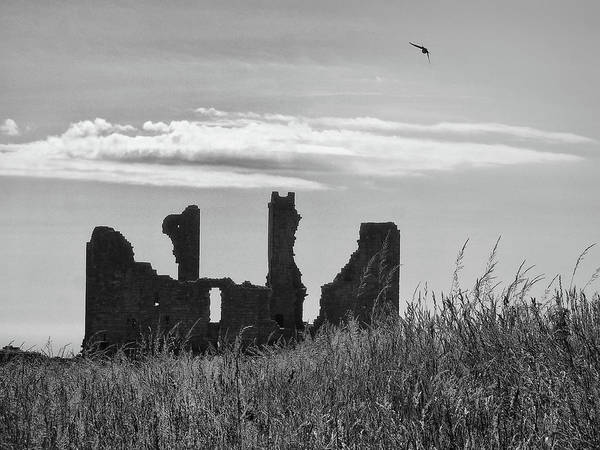 Northumbria Photograph - Swift Over Dunstanburgh by Philip Openshaw